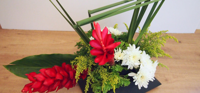 Geometric Lines – Red Ginger, Chrysanthemum & Typha Leaves