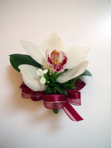 Cymbidium is preferred by Chinese parents