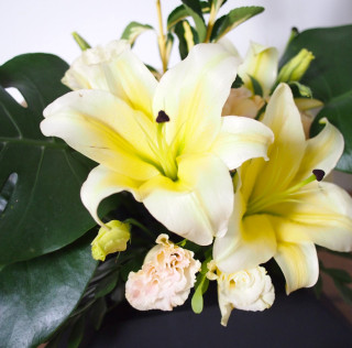 Triangular Form – Lily, Eustoma, Monstera & Euonymus