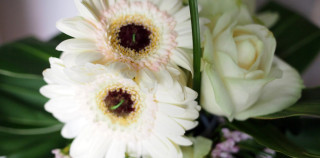White Gerbera Bridal Bouquet