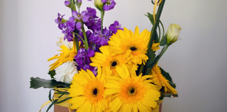 Yellow Gerbera, Purple Matthiola, White Eustoma