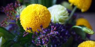 Crossing Curves – Ping Pong Chrysanthemum, Eustoma and Limonium